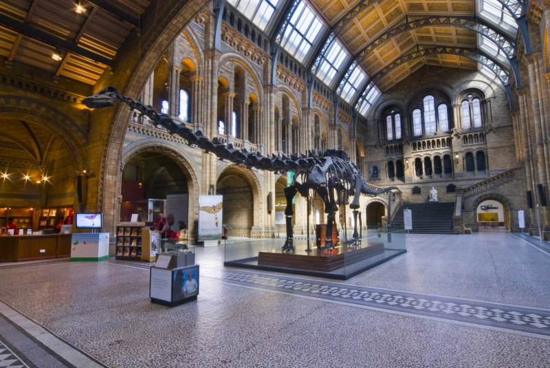 Top 10 Museums for Children in London